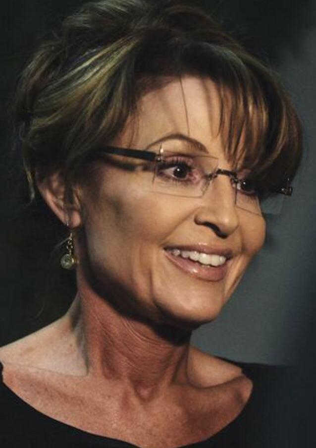 I am a Sarah Palin Supporter. Are You?