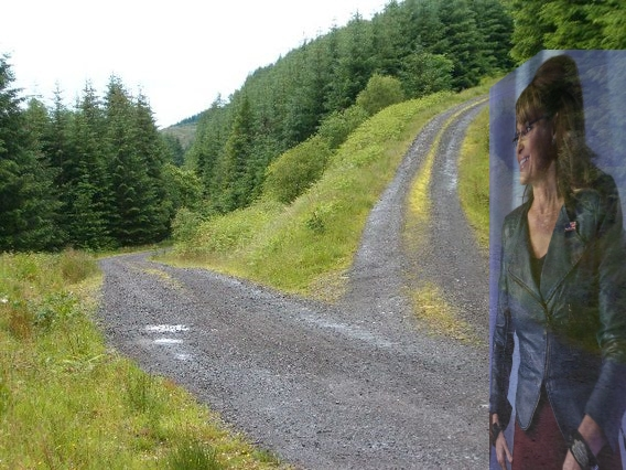 Sarah Palin Fork in the Road